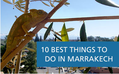 10 best to do marrakech