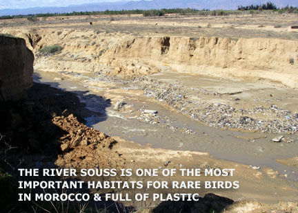 Oued Souss pollution